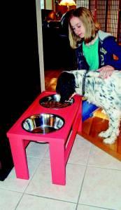 raised dog bowls pet feeder pet home dog proof